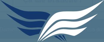 logo de pleindetrucs.fr